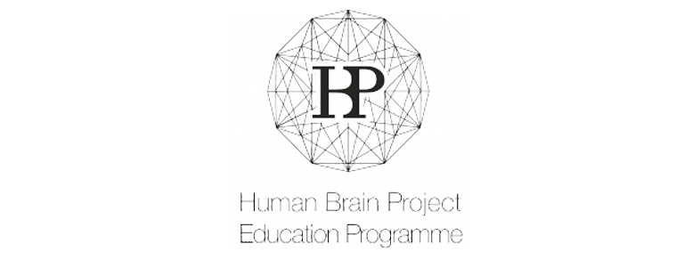 Short Course: Simulating the brain with the Brain Simulation Platform (BSP)